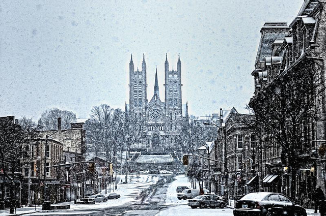 Guelph Winter